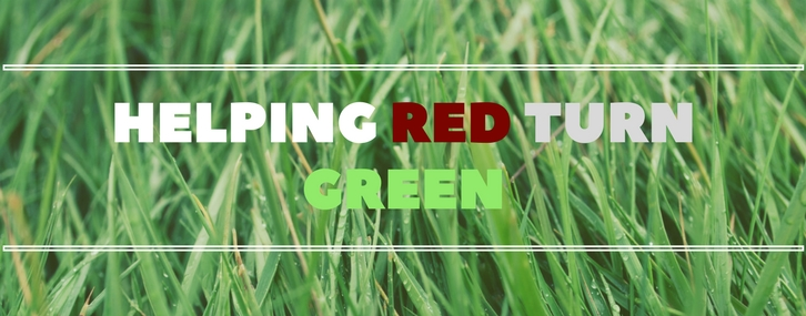 Helping Red Turn Green